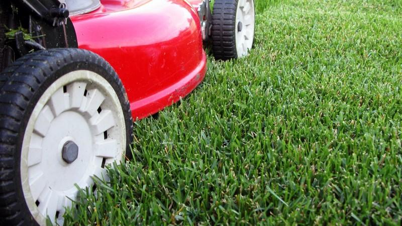devis tonte pelouse